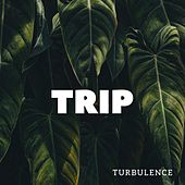 Trip by Luciano