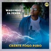 Crente Fogo Puro von Waguinho da Penha