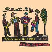 Tem Viola no Forró de João Ormond