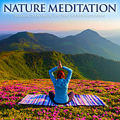 Nature Meditation: Relaxing Piano Music and Bird Sounds Meditation by Nature Sounds (1)