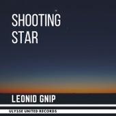 Shooting Star (Radio Edit) de Leonid Gnip