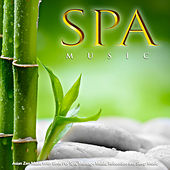 Spa Music: Asian Zen Music With Birds For Spa, Massage Music, Relaxation and Sleep Music by Sleeping Music (1)
