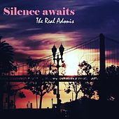 Silence Awaits by The Real Adonis