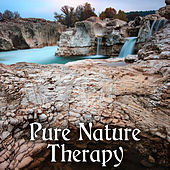 Pure Nature Therapy - Ambient Nature, Harmony Body & Soul, Free Spirit, Relax with Nature de Sounds Of Nature