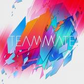 TeamMate de TeamMate