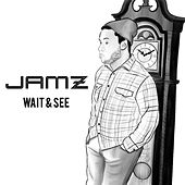 Wait & See by Jamz