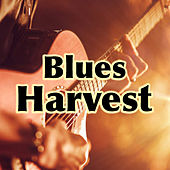 Blues Harvest de Various Artists
