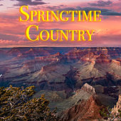 Springtime Country von Various Artists
