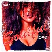 Soulful Love, Vol.1 von Various Artists