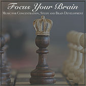 Focus Your Brain: Music for Concentration, Study and Brain Development by RelaxingRecords