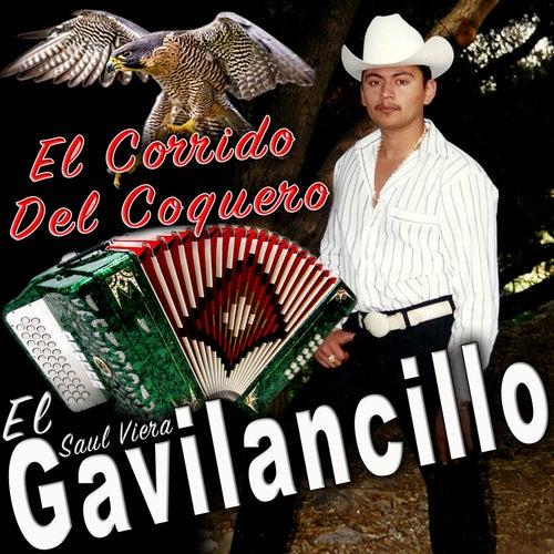 El Corrido del Coquero by Saul Viera el Gavilancillo