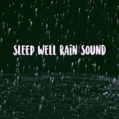 Sleep Well Rain Sound de Various Artists