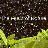 The Music of Nature de Various Artists