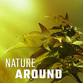 Nature Around – Music for Meditation, Natural Sounds, Sea Waves, Chillout, Serenity Zen Spa de Sounds Of Nature