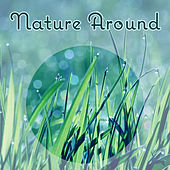 Nature Around – Music for Sleep, Meditation, Calm, Nature Sounds, Tranquility Time After Work de Zen Meditation and Natural White Noise and New Age Deep Massage
