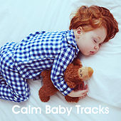 Calm Baby Tracks by Various Artists