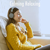Calming Relaxing by Various Artists
