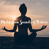 Meditation Sounds of Nature by Various Artists