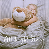 All Night Sleep by Various Artists