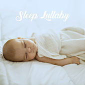 Sleep Lullaby by Various Artists
