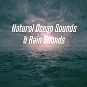 Natural Ocean Sounds & Rain Sounds de Various Artists