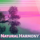 Natural Harmony – Sounds for Relaxation, Meditation, Nature Sounds, Ocean Waves, Birds Singing, Peaceful Mind de Healing Sounds for Deep Sleep and Relaxation