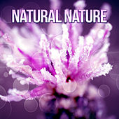 Natural Nature - Mute with Nature, New Energy, Murmur Brook, Sounds Water, Birds Twitter de Sounds Of Nature
