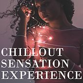 Chillout Sensation Experience by Various Artists