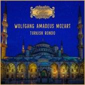 Mozart: Turkish Rondo by Virginia Black