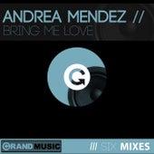 Bring Me Love von Andrea Mendez