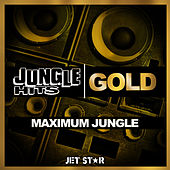 Jungle Hits Gold by Various Artists
