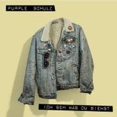 Ich seh was du siehst von Purple Schulz