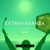 Oye Mi Canto by ExtravaganzaSound
