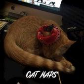 Cat Naps von Grime Lab