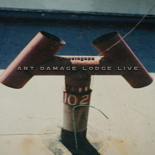 Art Damage Lodge Live by Roesing Ape