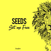 Set Me Free di The Seeds