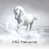 Old Memories: Instrumental Covers All the Time von Various Artists