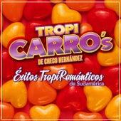 Éxitos Tropi Románticos de Sudamérica von Tropi Carro's De Checo Hernández