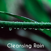 Cleansing Rain - Pure Music, Natural Energy, Raining Song, Pleased with Fireplace with Wine de soundscapes