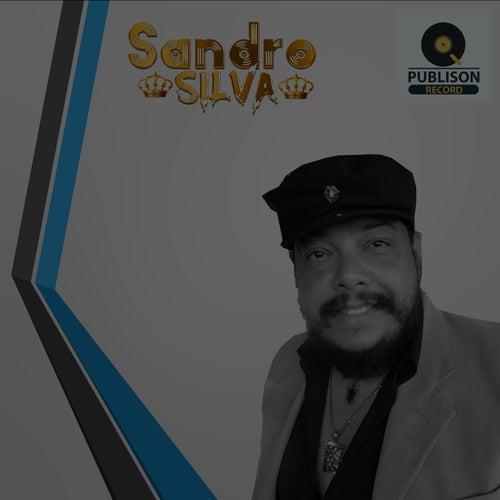 Sandro Silva von Sandro Silva
