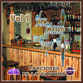 New Mexico Super Stars Canciones de la Cantina, Vol. 1 by Various Artists
