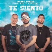 Te Siento von Manny Montes