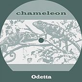 Chameleon by Odetta