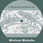 Chameleon von Miriam Makeba