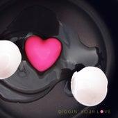 Diggin' Your Love de Bao