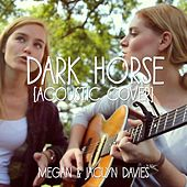 Dark Horse (Acoustic Cover) feat. Jaclyn Davies by Megan Davies