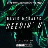 Needin' U (Stereo Dub) von David Morales