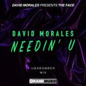 Needin' U (Unabomber Remix) von David Morales
