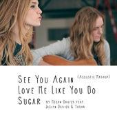 See You Again, Love Me Like You Do, Sugar (Acoustic Mashup) by Megan Davies