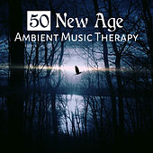 50 New Age: Ambient Music Therapy - Calming Instrumental Songs and Relaxing Nature of Sounds to Relieve Stress and Meditation for Sleep by Deep Sleep Music Academy